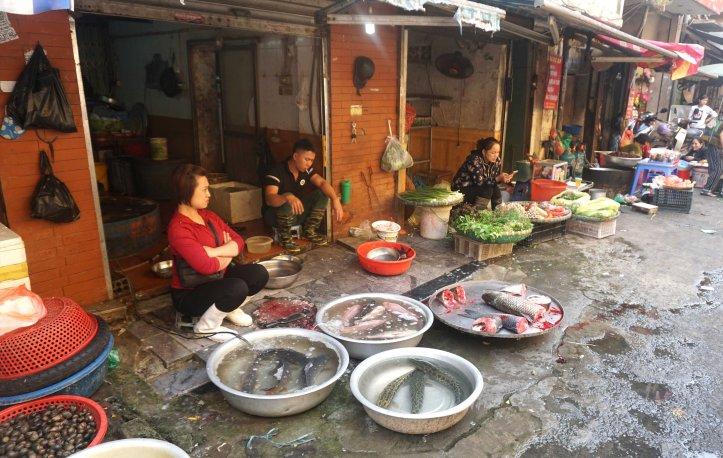 mercado hanoi pescado
